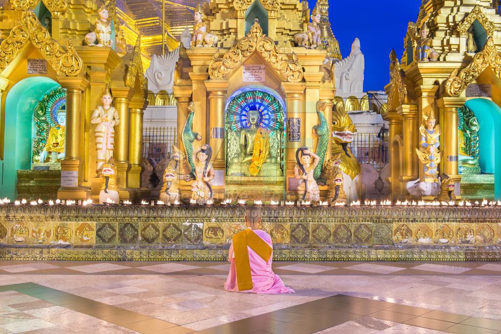MW0117-9366 | Betende Nonne in der Shwedagon-Pagode