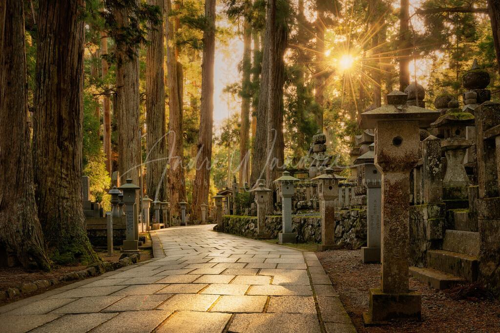 Abends auf dem Okunoin Friedhof