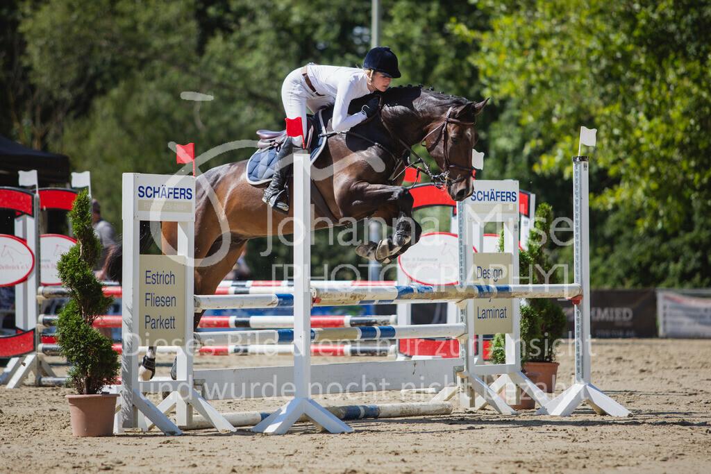 200819_Delbrück_Sprpf-A_2_1-221 | Delbrück Masters 2020 Springpferdeprüfung Kl. A** 4-6jährige Pferde