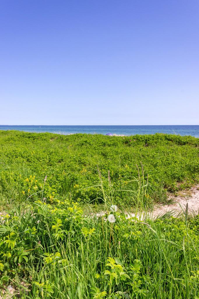 Frühling an der Ostsee | Strand in Kronsgaard im Frühling