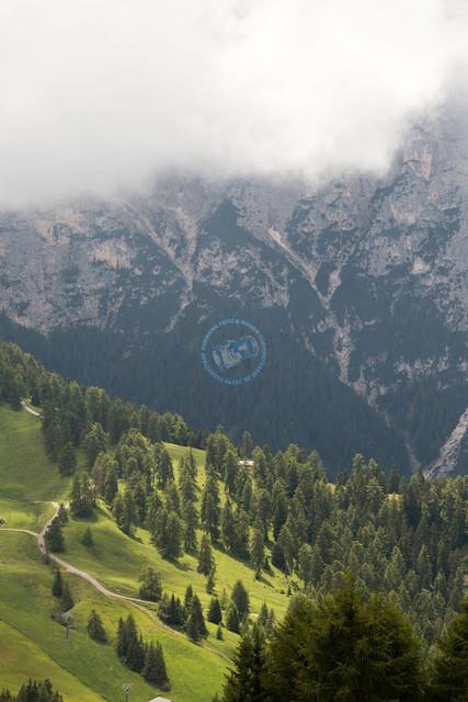 Seiser Alm   ITA, Italien, Südtirol, Seiser Alm, Dolomiten, 13.07.2014, Seiser Alm