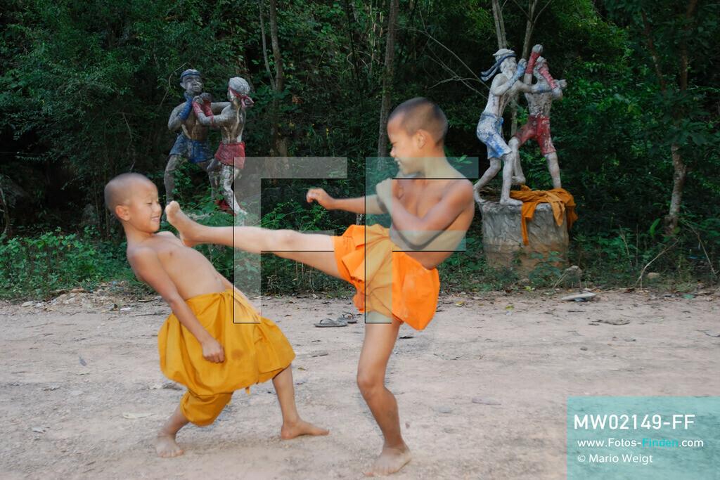 MW02149-FF | Thailand | Goldenes Dreieck | Reportage: Buddhas Ranch im Dschungel | Die jungen Mönche lernen Muay Thai (Thaiboxen)  ** Feindaten bitte anfragen bei Mario Weigt Photography, info@asia-stories.com **