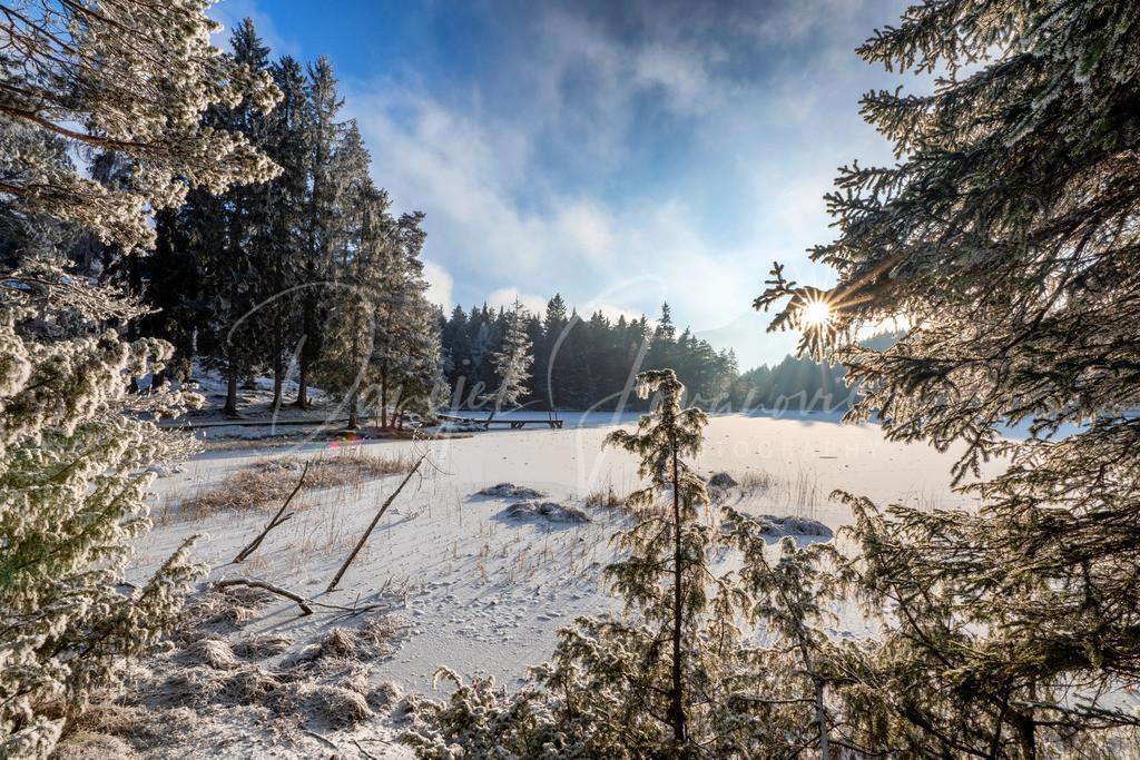 Winter Wonderland | Winter am Möserer See