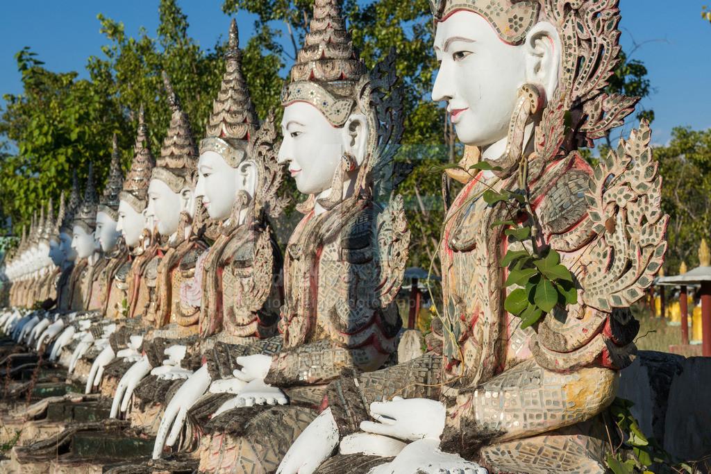 MW1218-6113 | Myanmar: Buddha-Statuen in Feld der Eintausend Buddhas in Monywa