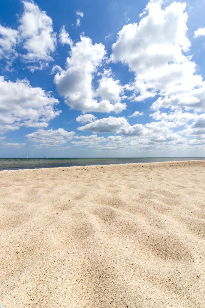 Strand in Weidefeld   Sandstrand im Frühling