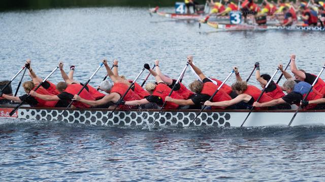Drachenboot | Paddler legen sich ins Zeug beim Drachenbootrennen