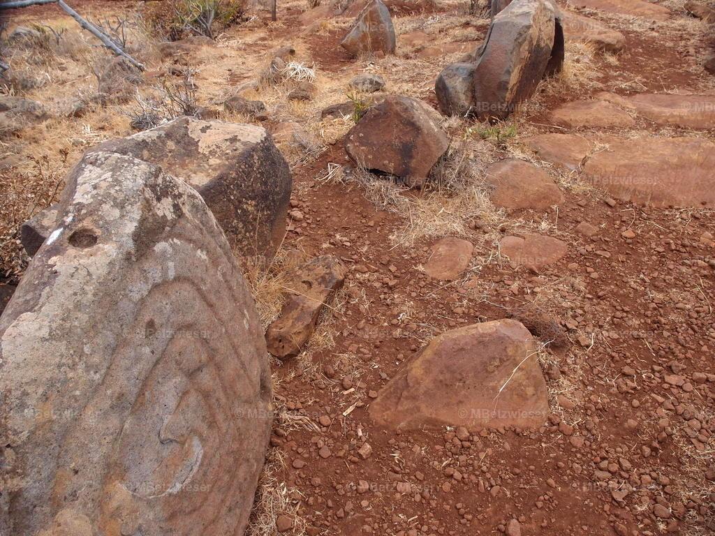 P6106514 | Steingravuren der Guanchen gefunden bei Garafia