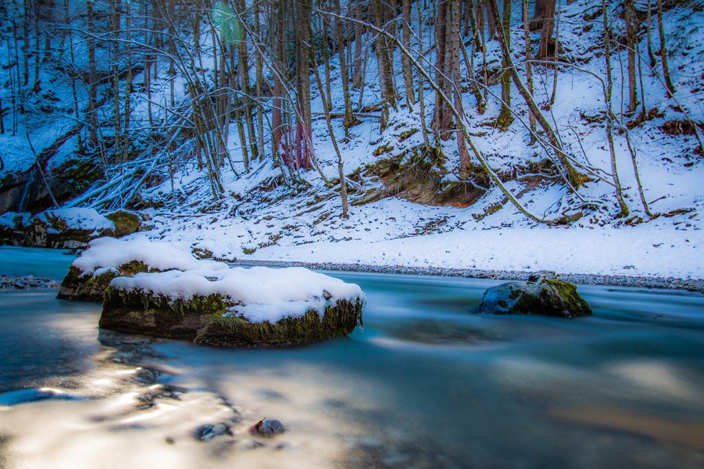 Lebensquelle | Jedes Wasser hat seine Quelle, jeder Baum seine Wurzel.  Aus China