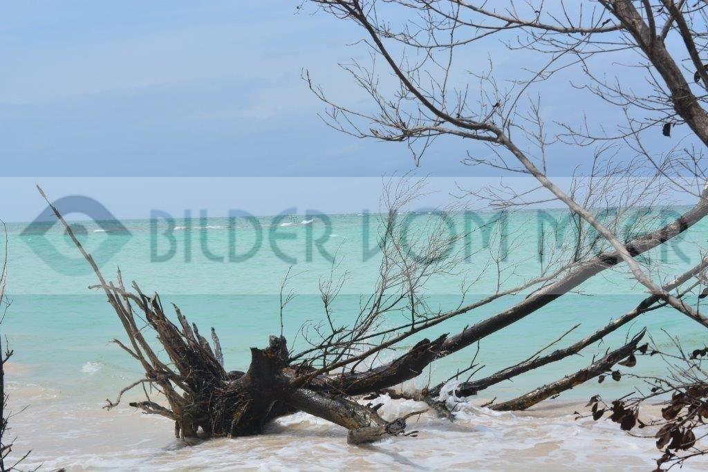 Fotoausstellung Bilder vom Meer Karibik | Strandbilder Cayo Jutía Kuba