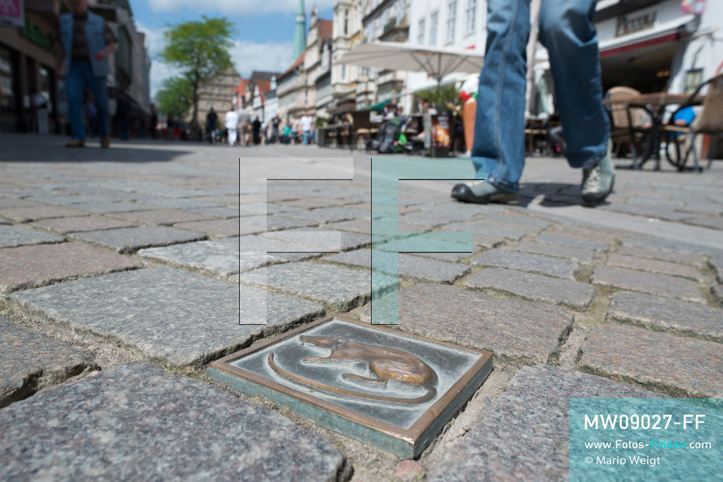 MW09027-FF | Deutschland | Niedersachsen | Hameln | Reportage: Reise entlang der Weser | Eine von 250 Bronzeplatten mit Rattenrelief in der Osterstraße. Diese Ratten des sogenannten Rattenweges führen entlang der wichtigsten Sehenswürdigkeiten durch die Altstadt. Die Stadt ist bekannt für das Märchen