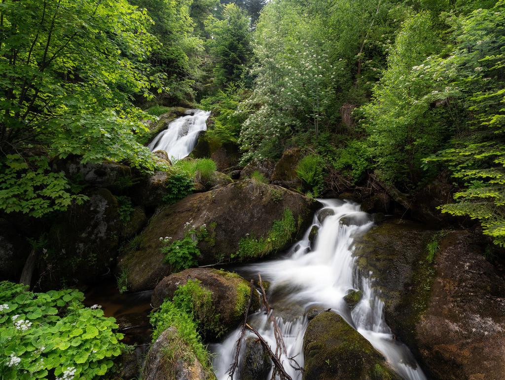 Tribergerwasserfälle 2