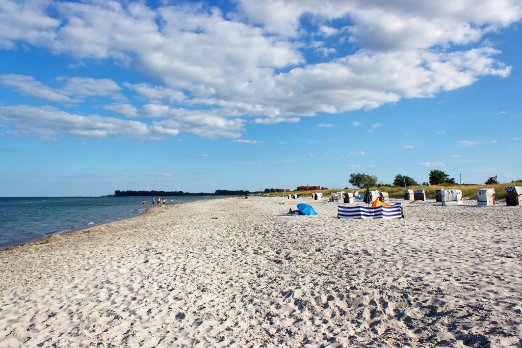 Strand in Kronsgaard | Sandstrand in Kronsgaard im Sommer