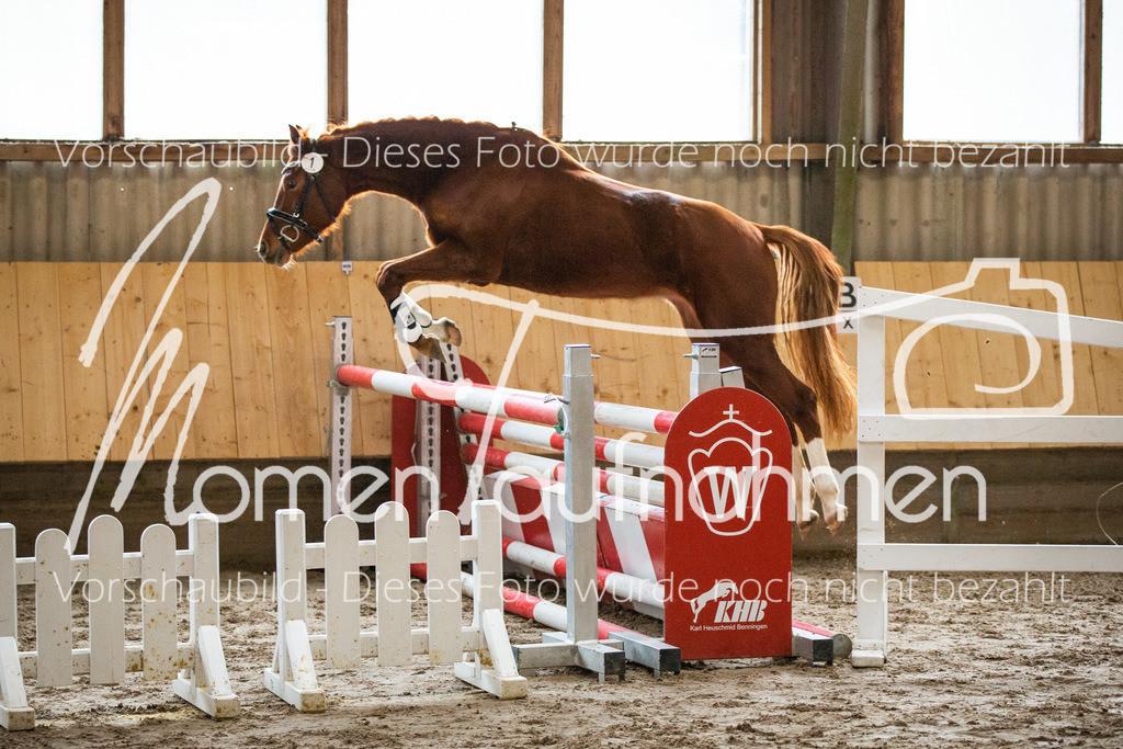 Freispringen-Pony-3j-04