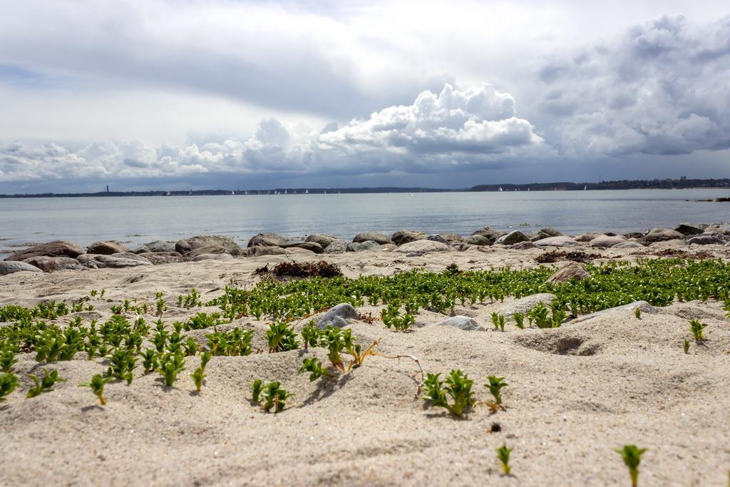 Strand in Strande | Sandstrand in Strand