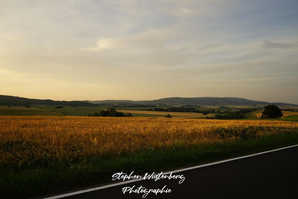 Der Donnersberg | Der Donnersberg mit Landstrasse und Kornfeld im Vordergrund