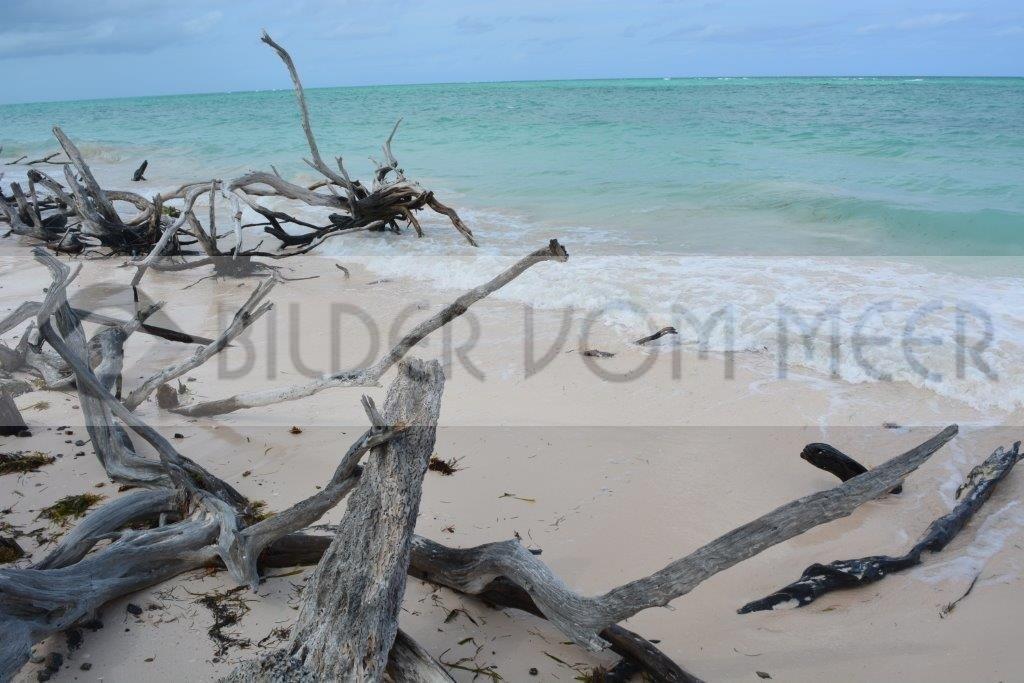 Strand Bilder | Bilder vom Meer