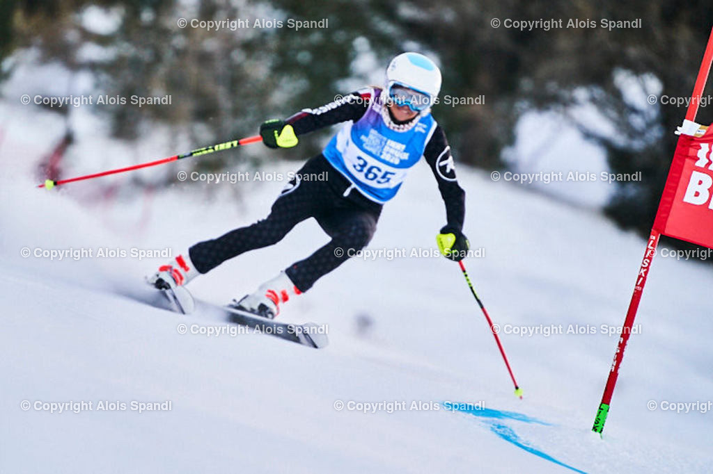 ALS5487_WWMG_GS-II_C | (C) FotoLois.com, Alois Spandl, WinterWorldMastersGames 2020 Innsbruck, Giant Slalom-II Gruppe C Damen, Patscherkofel Olympiaabfahrt, Mi 15. Jänner 2020.