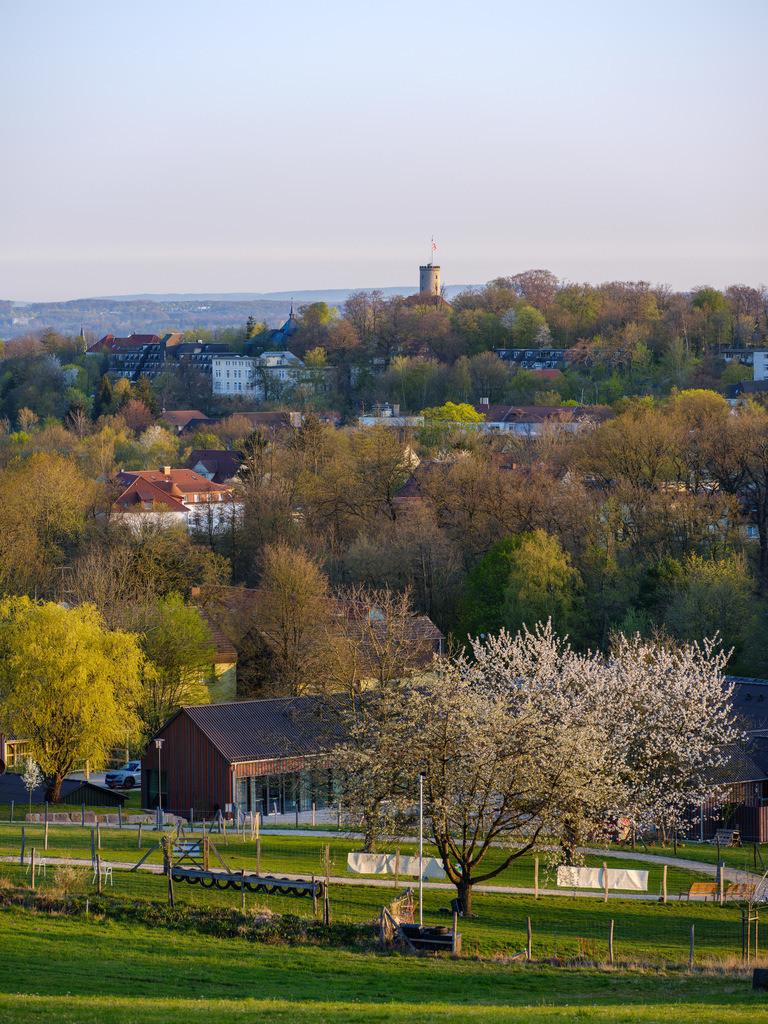 Bielefeld-Bethel am Morgen | Blick über Bielefeld-Bethel früh morgens mit der Sparrenburg im Hintergrund.
