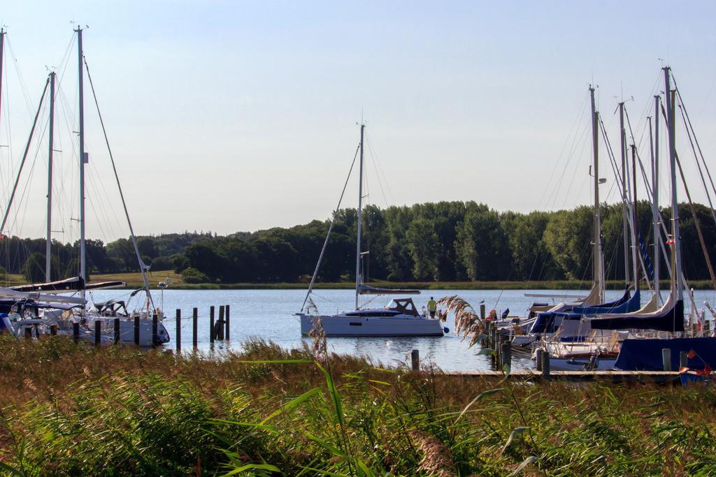 Lindaunis an der Schlei | Yachthafen in Lindaunis im Sommer