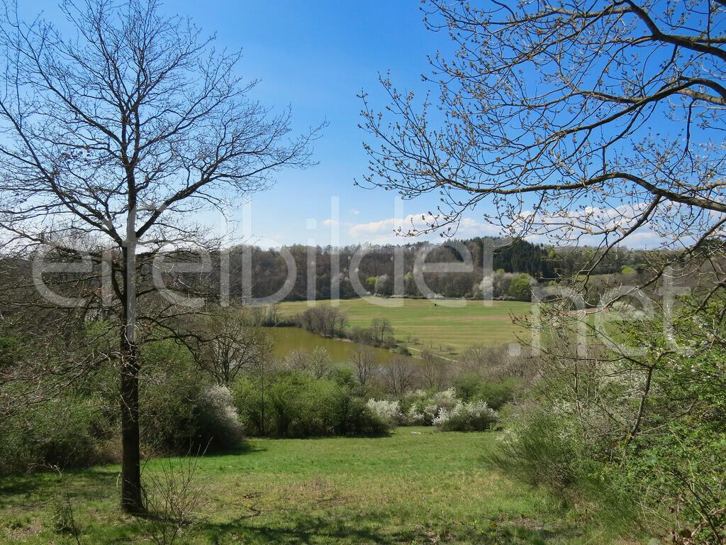 Immerather Maar im Frühling   Landschaft am Immertaher Maar, Immerath in der Eifel (Vulkaneifel)