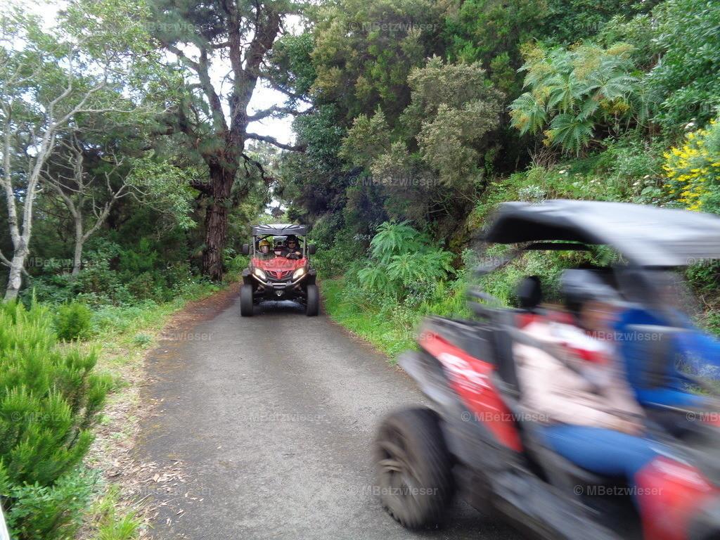 DSC01014 | Quad / Buggy Safari auf La Palma