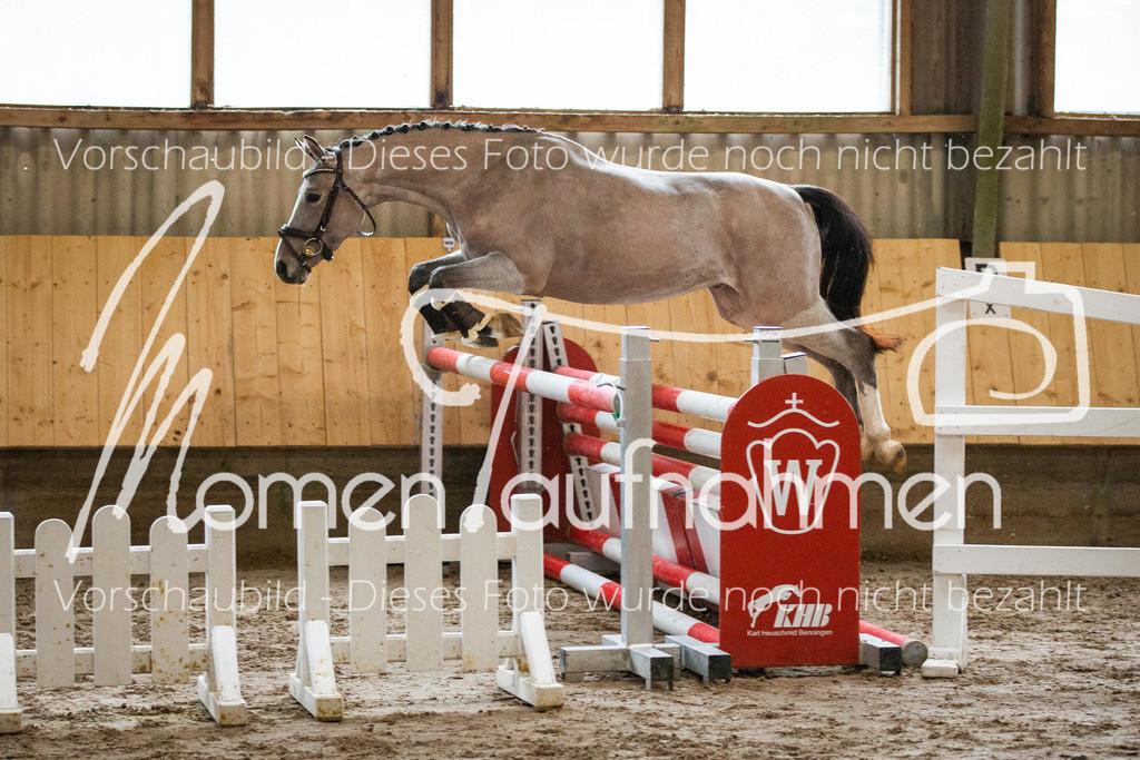 Freispringen-Pony-3j-11