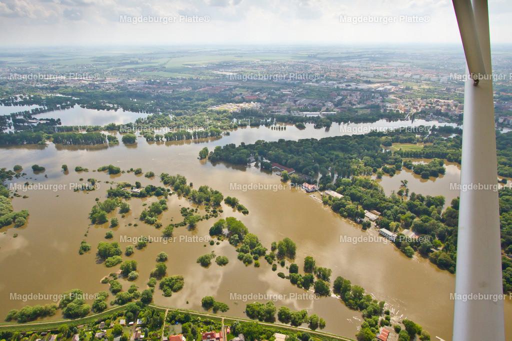 Hochwasser Magdeburg Rotehornparkspitze 2013-0231