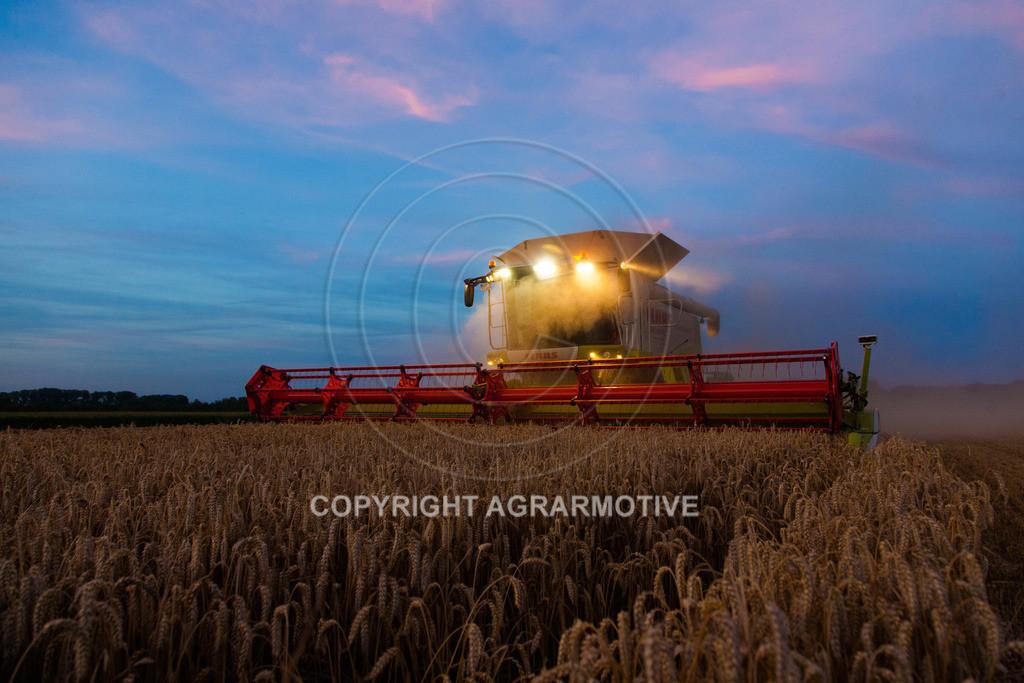 20120817-_MG_8853 | Weizenernte in der Dämmerung