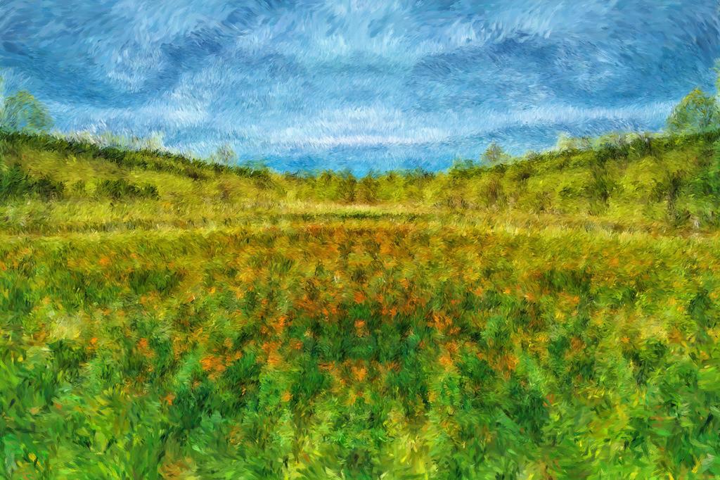 #21 Sommerwiese | Fotografie trifft auf Digital Painting, moderne Malerei - Mixed Media. Die Entstehung dieser Kunstserie erfolgt über Fotografie und digital Painting. Die digitale Vorgehensweise ermöglicht es mir Kunstwerke zu erschaffen die mit konventioneller Herangehensweise nicht zu realisieren sind.