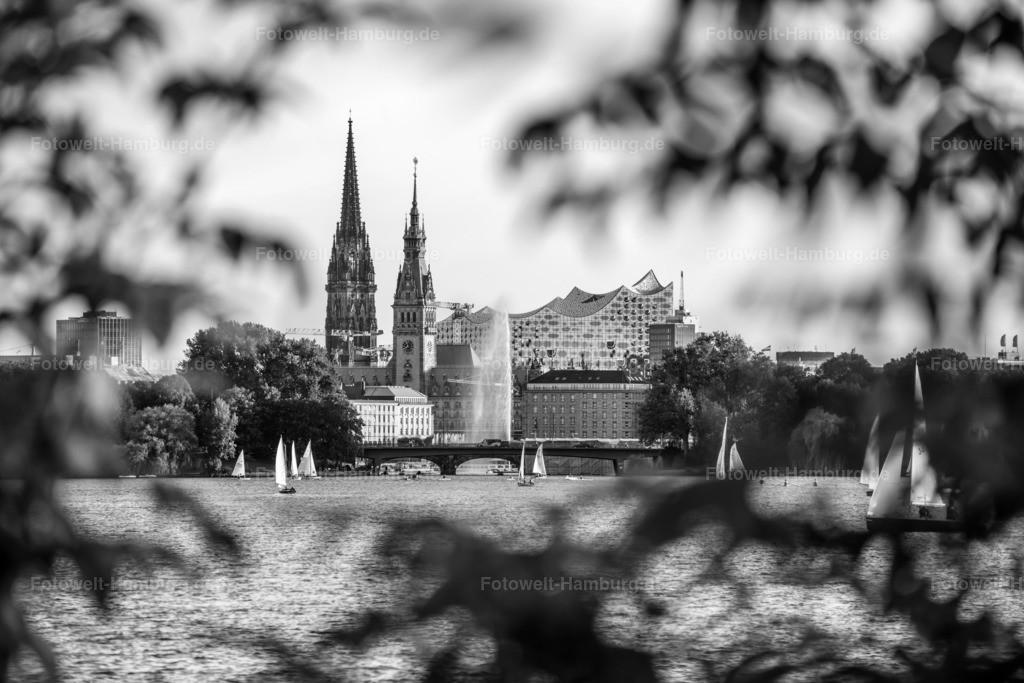 10201110 - Alster Ensemble | Blick über die Aussenalster auf die Nikolaikirche, das Rathaus und die Elbphilharmonie, hier eindrucksvoll in schwarzweiß eingefangen.