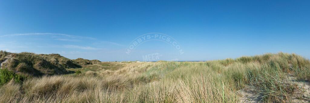 DSC8154-Pano | Panorama-Dünenlandschaft