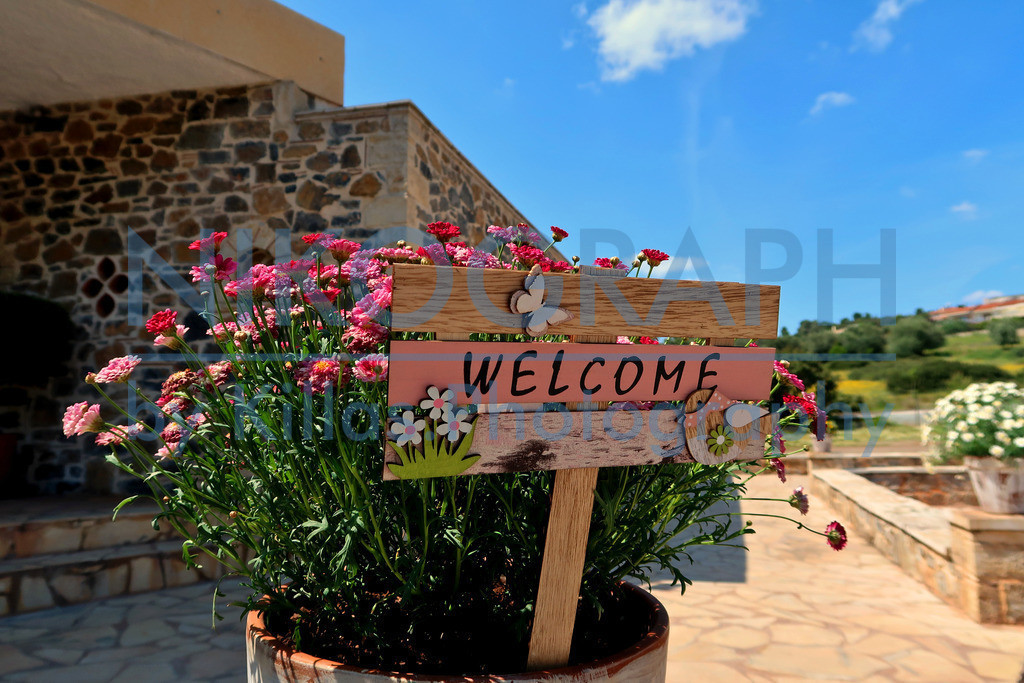 Welcome-Blumen-IMG_7446-Edit