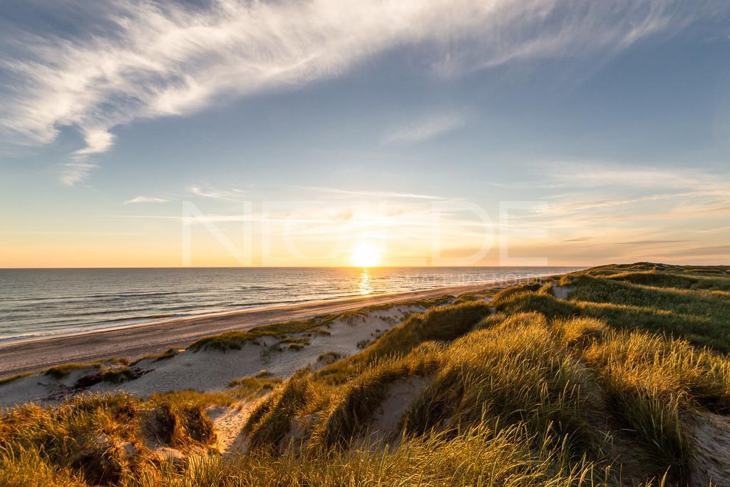 Dünenlandschaft bei Hvidesande | Blick über die Dünen auf die Nordsee im Norden Dänemarks