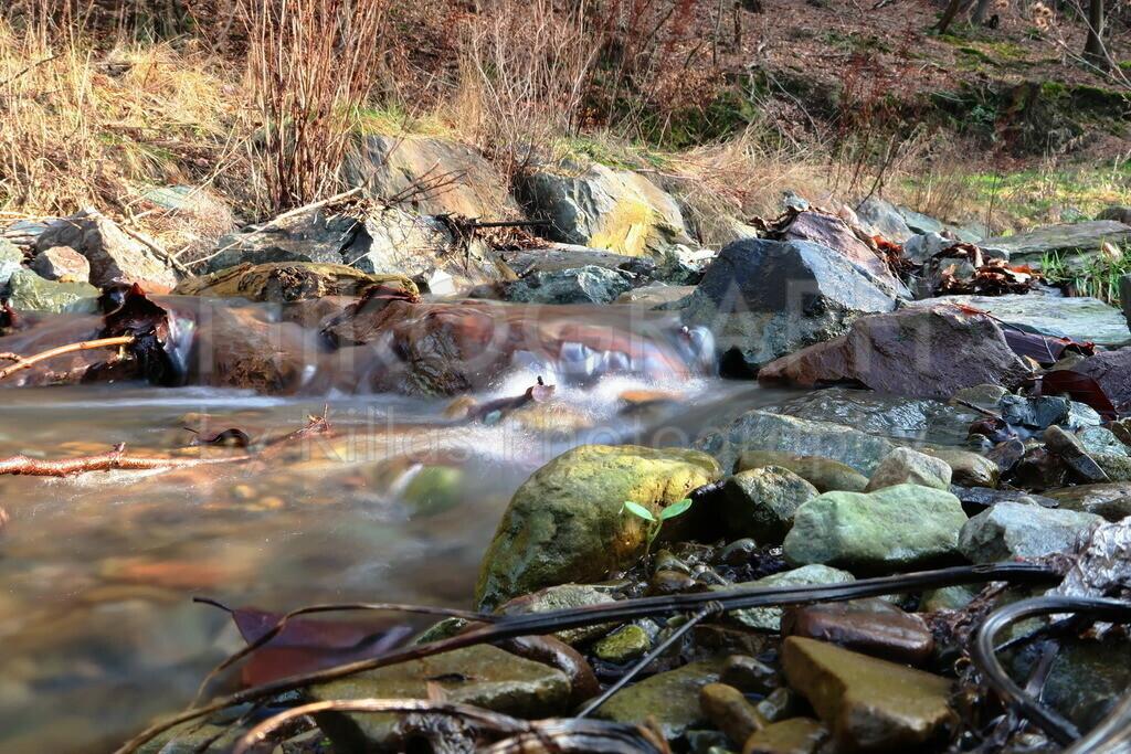 Am Lösseler Bach in Iserlohn | Das Wasser bahnt sich am Ufer des Lösseler Baches in Iserlohn seinen Weg.