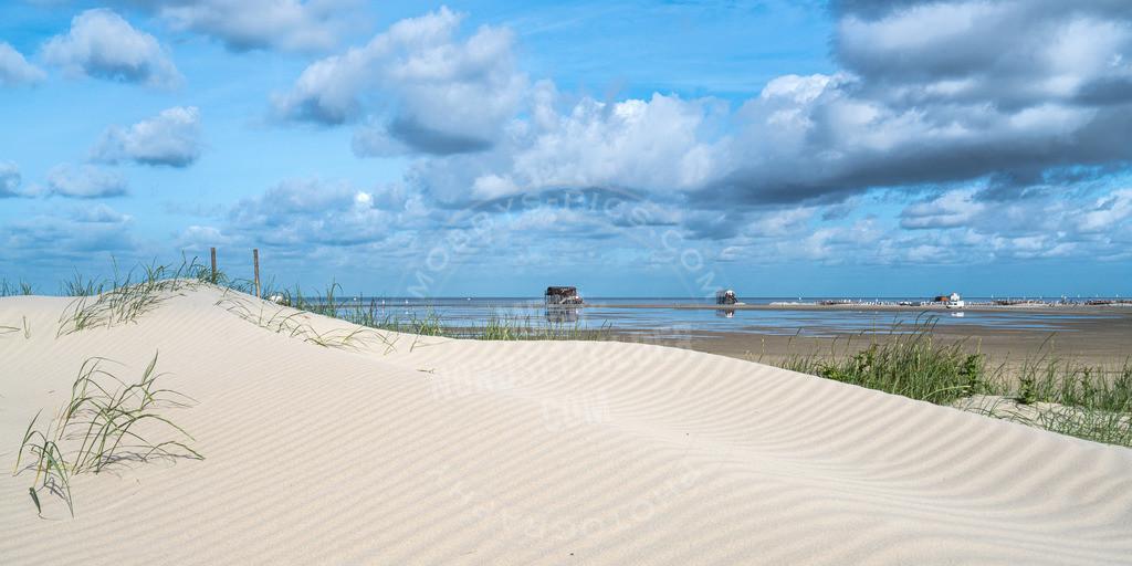 _DSC3364 | SPO Beach