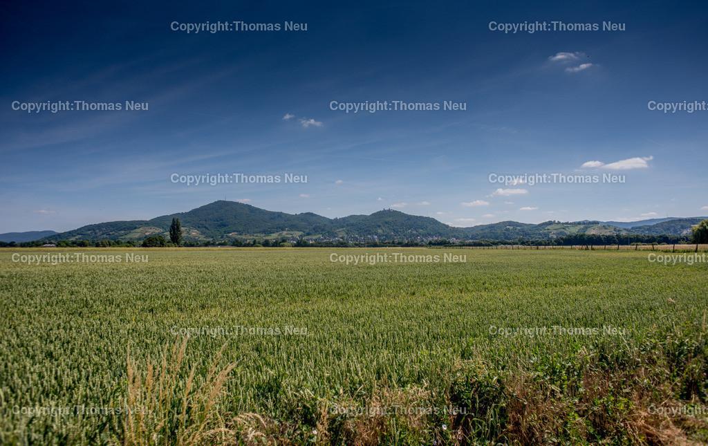 Bergstrasse | ,Panorama,Bensheim,Auerbach,Felder,Hessen,Bergstrasse,Nibelungenland,Bild: Thomas Neu