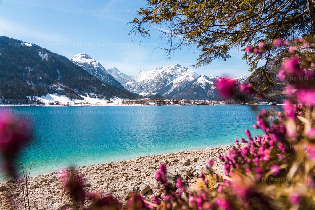 Achensee im Frühling-1