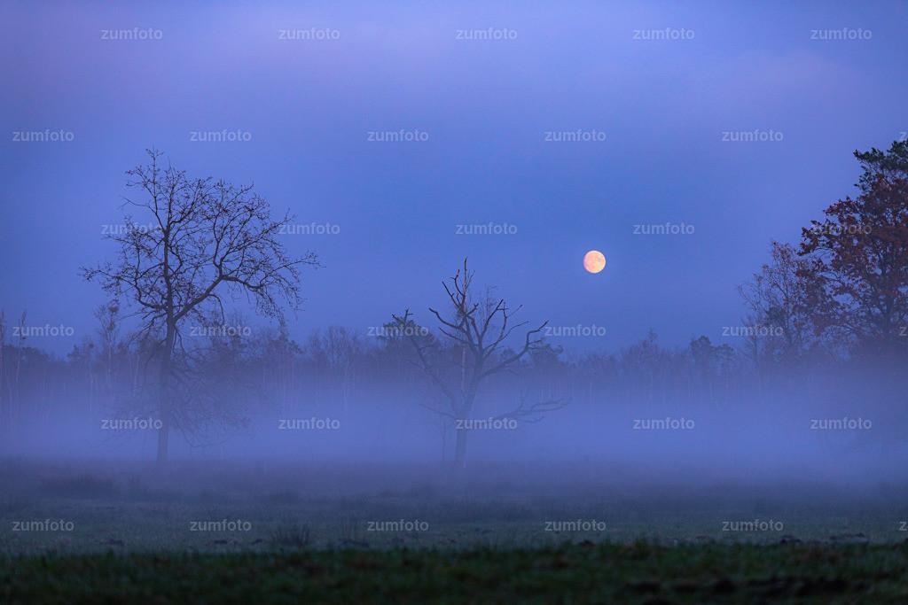191110_1637-7428 | Ich liebe das Wetter :-)