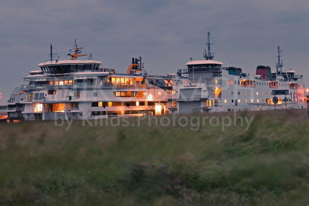 Fähren am Fährhafen von Texel   Die drei Fähren Texelstroom, Schulpengat, Dokter Wagenmaker am Fährhafen von Texel.