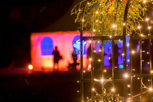 Wilhelma Stuttgart Christmas Garden Beleuchtungskonzept Lichterbogen und Mistelzweige | DEU, Deutschland, Stuttgart, 15.11.2018, Wilhelma Stuttgart Christmasworld Beleuchtungskonzept Lichterbogen und Mistelzweige [© 2018 Christoph Hermann, Gartenstrasse 25, 70794 Filderstadt; Veroeffentlichung nur gegen Honorar, Urhebervermerk und Belegexemplar. www.hermann-foto-design.de - Bank Details: Kto. , BLZ 60050101 Kto.Nr. 5623176 ; Contact: E-Mail ch@hermann-foto-design.de, fon: +49 711 636 56 85, fax 6365693 ]