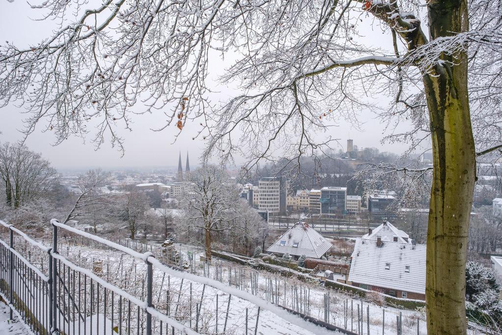Schnee auf dem Johannisberg | Verschneiter Johannisberg an einem Morgen im Januar.