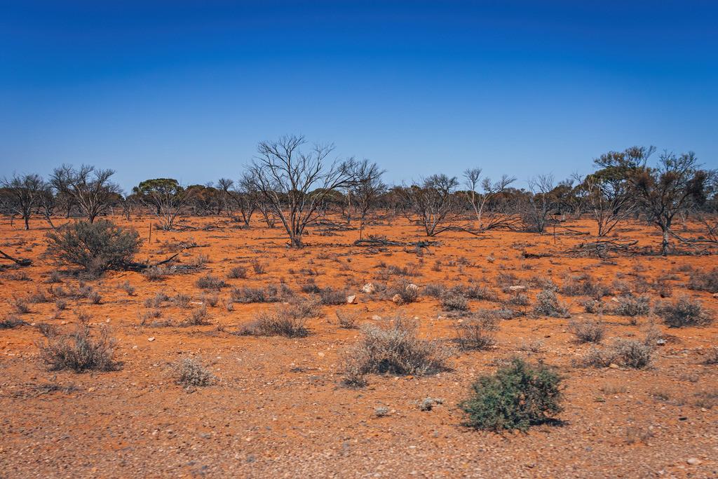 Wüstenabschnitt Australien | Wüstenabschnitt Australien auf dem Weg nach Coober Pedy