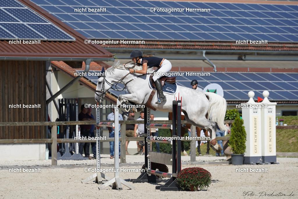 20190915-F_P09703 | Horse Gym´s Landino, Honsolgen, 2019