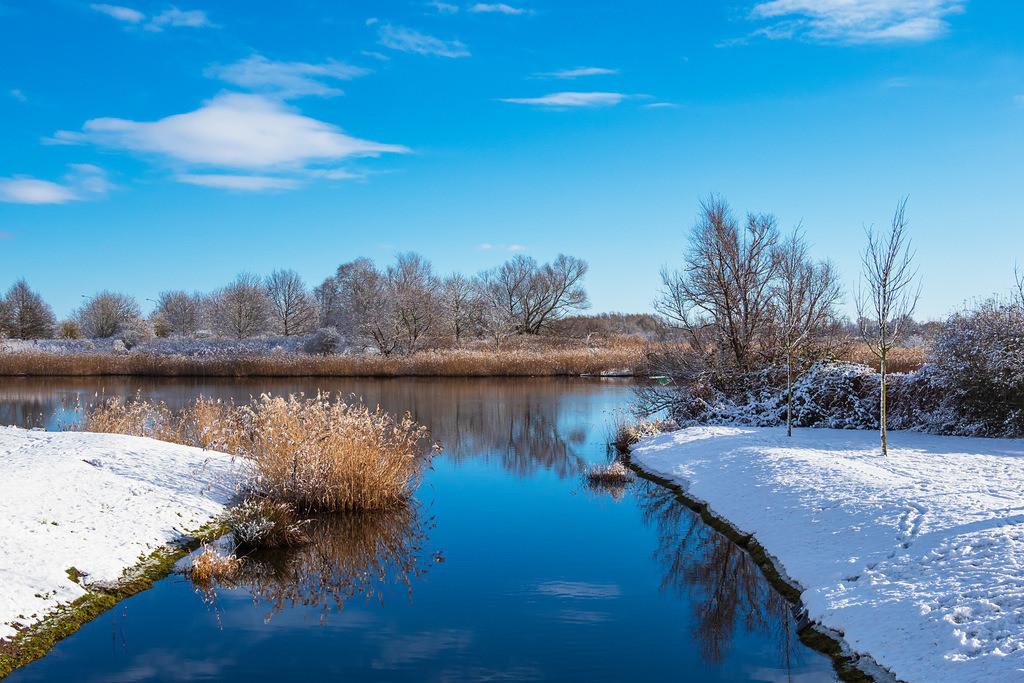 Landschaft an der Warnow in der Hansestadt Rostock im Winter | Landschaft an der Warnow in der Hansestadt Rostock im Winter.