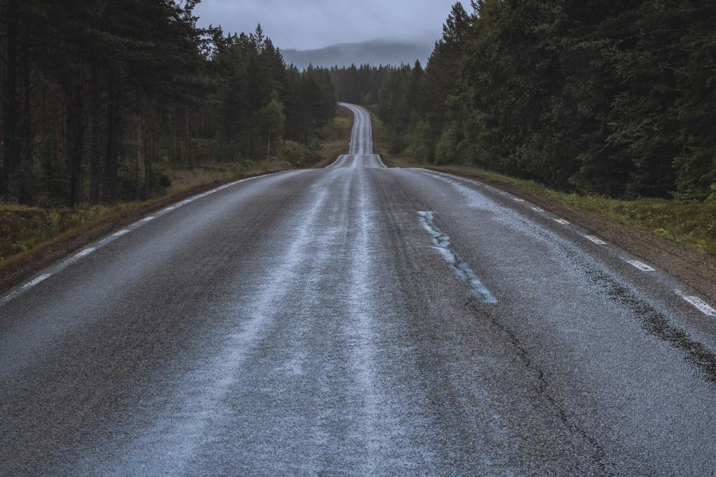Straße in Schweden | Straße in der Region Värmland.