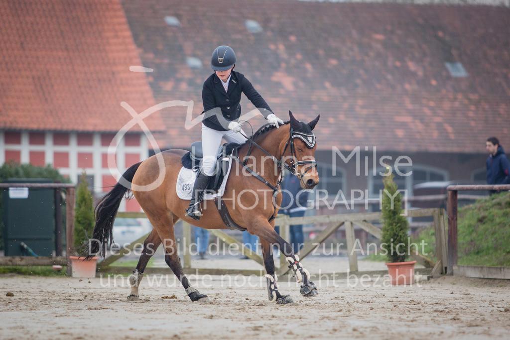 190406_Frühlingsfest_StilE-018 | Frühlingsfest der Pferde 2019, von Lützow Herford, Stil-WB mit erlaubter Zeit