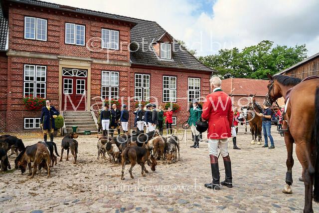 Jagd Knoop 216922_Marina Hewig