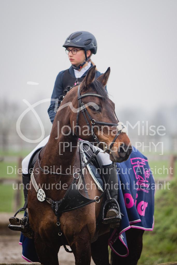 190406_Frühlingsfest_StilE-068 | Frühlingsfest der Pferde 2019, von Lützow Herford, Stil-WB mit erlaubter Zeit