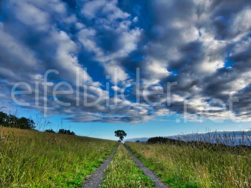 Wolkentanz in der Eifel   interessante Wolken, fotografiert in Daun, Vulkaneifel