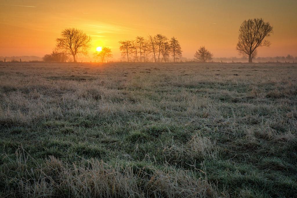 Sonnenaufgang bei Vollersode | Winterlicher Sonnenaufgang bei Vollersode